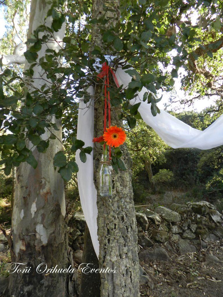 Decoración Ceremonias Civiles en el exterior