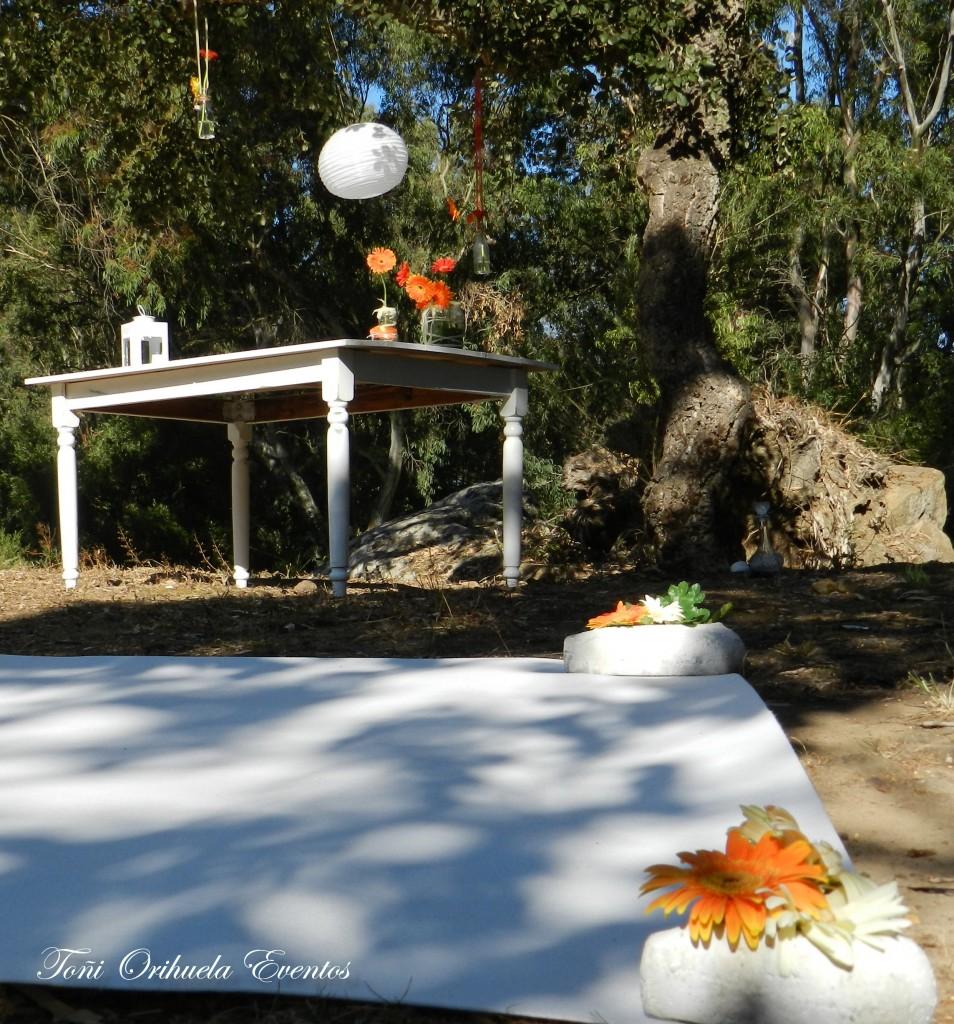 Montaje de ceremonia civil en el bosque